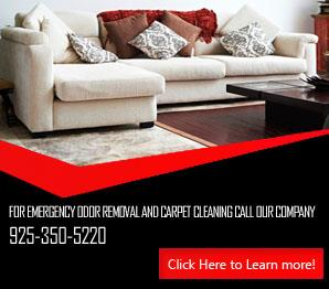 Water Damage - Carpet Cleaning Danville, CA